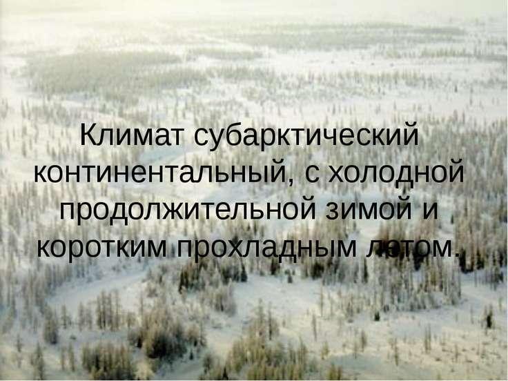 Климат субарктический континентальный, с холодной продолжительной зимой и кор...