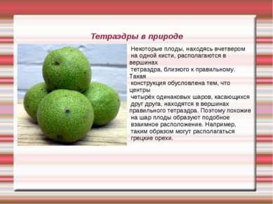 Тетраэдры в природе Некоторые плоды, находясь вчетвером на одной кисти, распо...