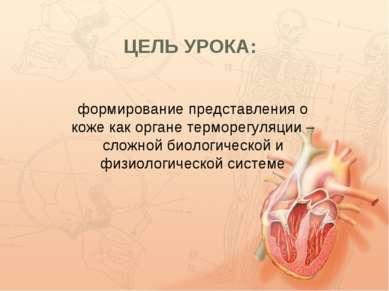 ЦЕЛЬ УРОКА: формирование представления о коже как органе терморегуляции – сло...
