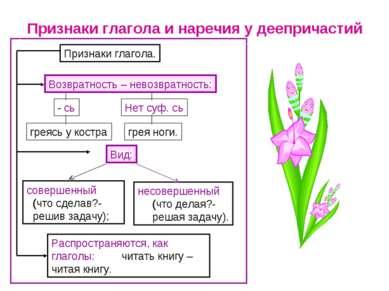 Признаки глагола и наречия у деепричастий Распространяются, как глаголы: чита...