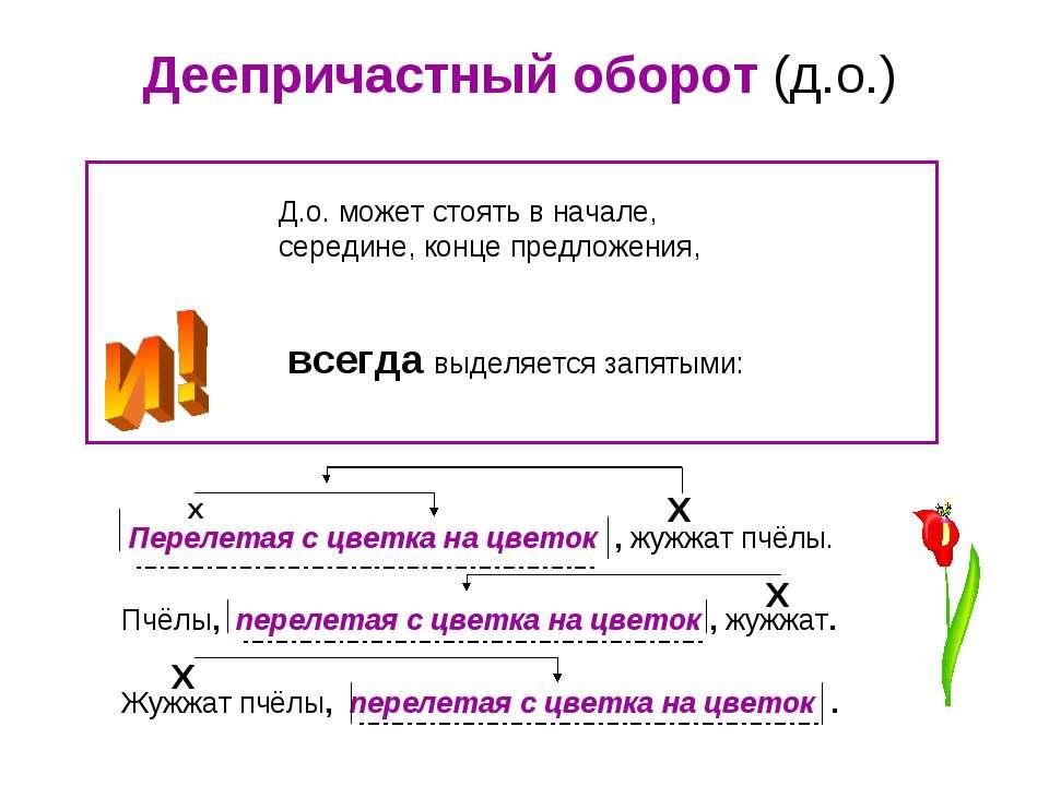 Деепричастный оборот (д.о.) Д.о. может стоять в начале, середине, конце предл...