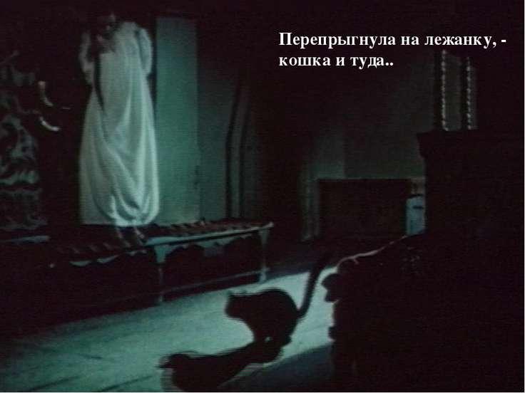 Перепрыгнула на лежанку, - кошка и туда..