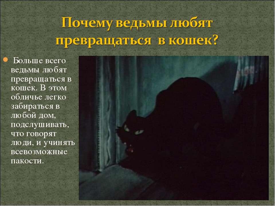 Больше всего ведьмы любят превращаться в кошек. В этом обличье легко забирать...