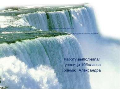 Исследовательская работа  Определение физико–химических свойств воды в родни...