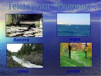 болото ручей река море