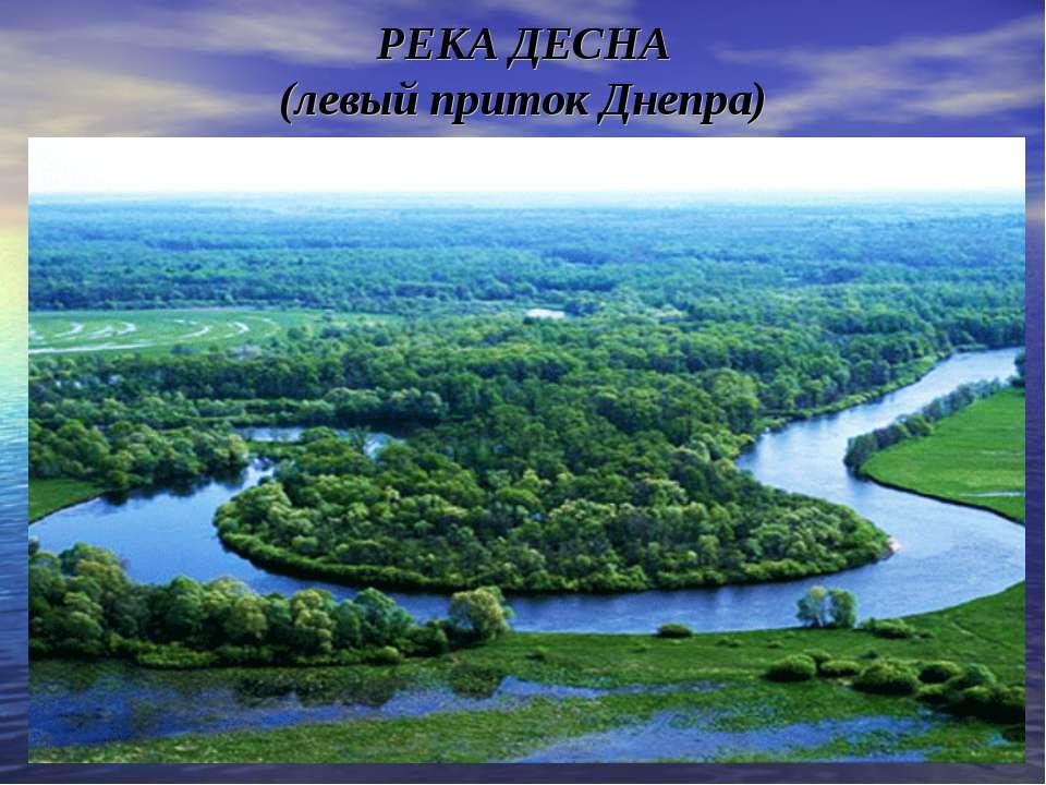 РЕКА ДЕСНА (левый приток Днепра)