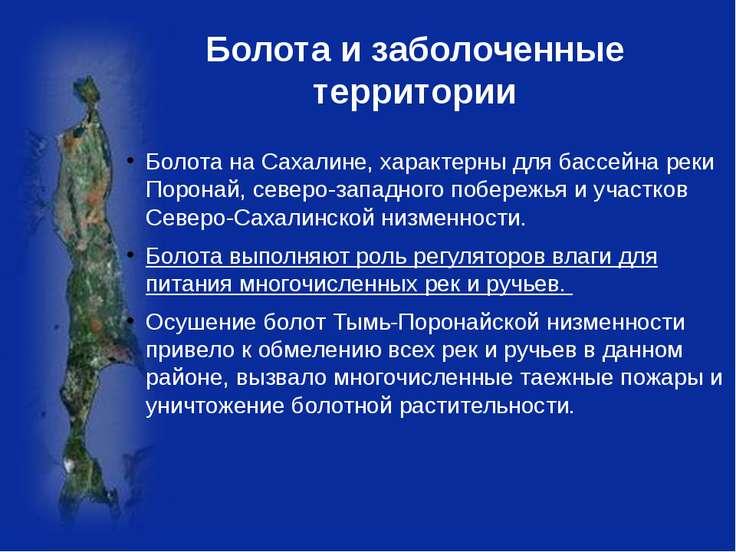 Болота и заболоченные территории Болота на Сахалине, характерны для бассейна ...