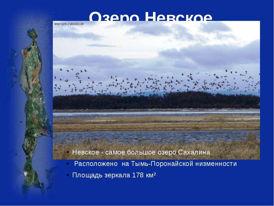 Озеро Невское Невское - самое большое озероСахалина Расположено наТымь-Поро...