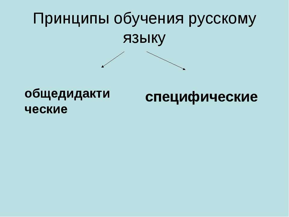 Принципы обучения русскому языку общедидактические специфические