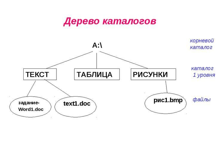 Дерево каталогов корневой каталог каталог 1 уровня файлы
