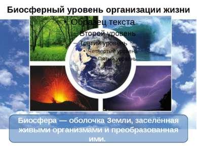 Биосферный уровень организации жизни Биосфера— оболочка Земли, заселённая жи...
