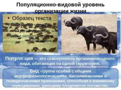 Популяционно-видовой уровень организации жизни Популя ция— это совокупность ...