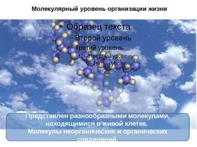 Молекулярный уровень организации жизни Представлен разнообразными молекулами,...