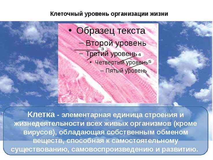 Клеточный уровень организации жизни Клетка - элементарная единица строения и ...