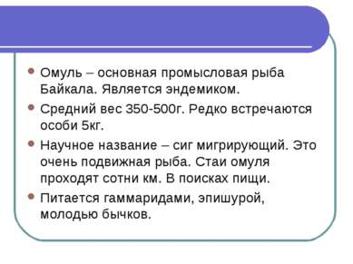 Омуль – основная промысловая рыба Байкала. Является эндемиком. Средний вес 35...