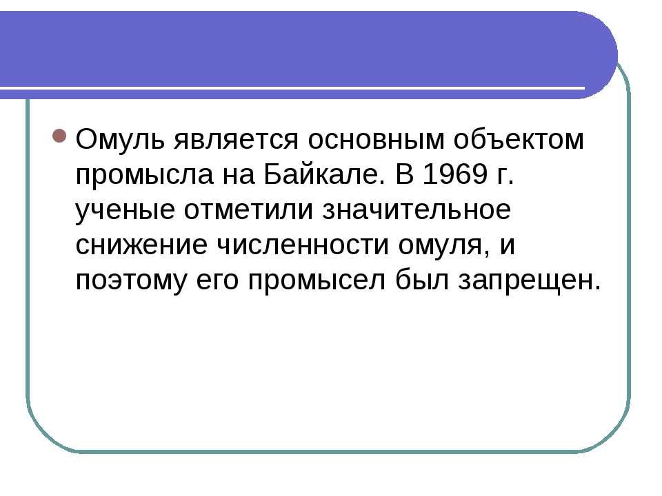 Омуль является основным объектом промысла на Байкале. В 1969 г. ученые отмети...
