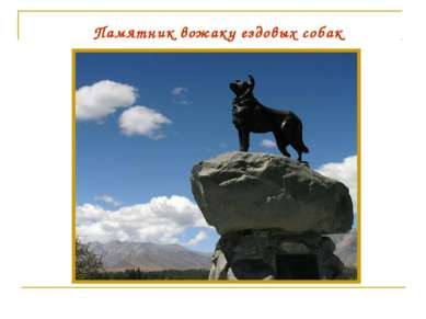 Памятник вожаку ездовых собак