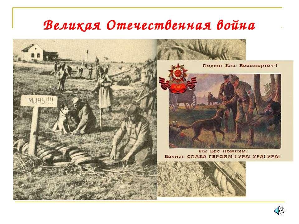 Великая Отечественная война 15153 кв. км. 4 млн. 200 тысяч 680 тысяч