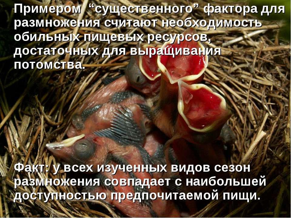 """Примером """"существенного"""" фактора для размножения считают необходимость обильн..."""