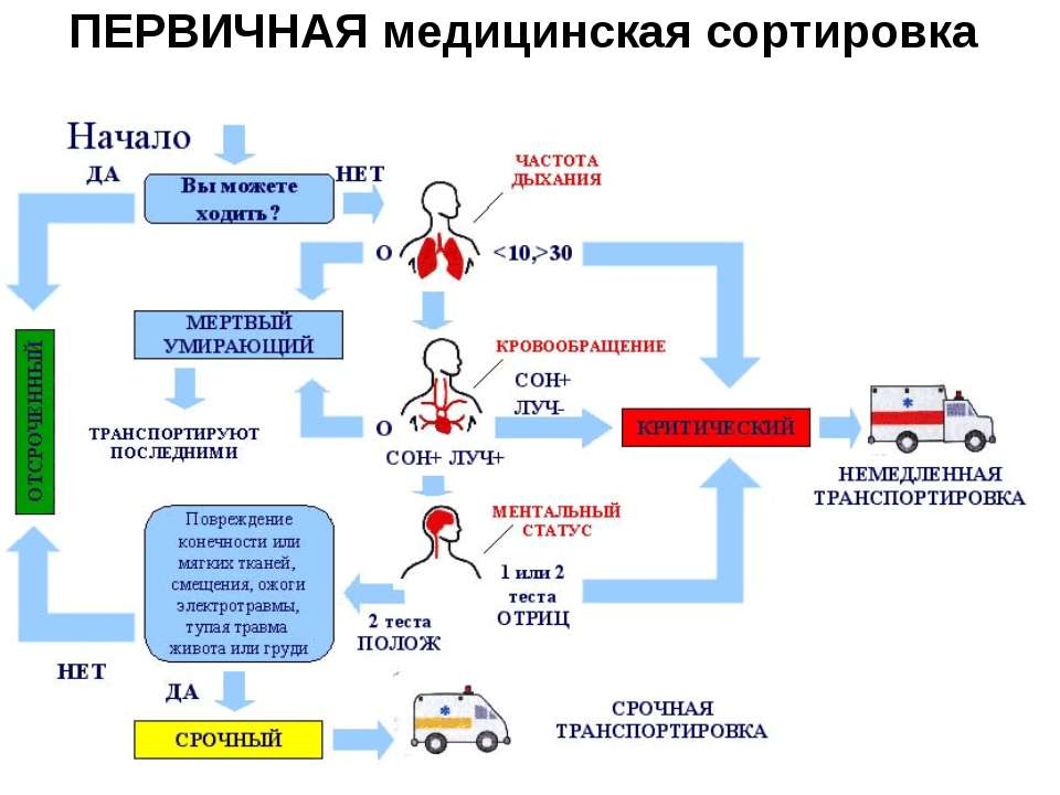 ПЕРВИЧНАЯ медицинская сортировка