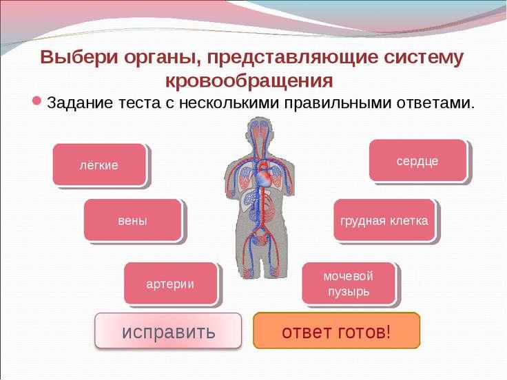 Выбери органы, представляющие систему кровообращения Задание теста с нескольк...