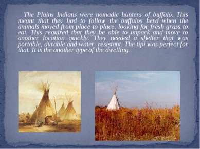 The Plains Indians were nomadic hunters of buffalo. This meant that they had ...