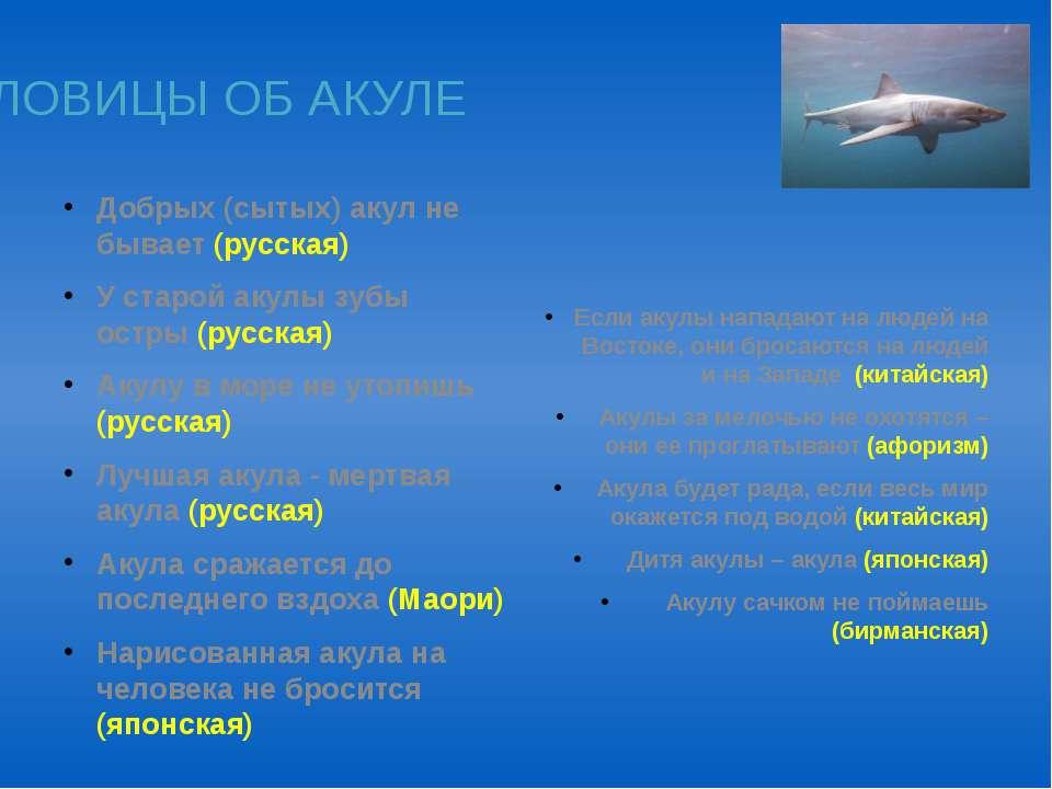 Добрых (сытых) акул не бывает (русская) У старой акулы зубы остры (русская) А...