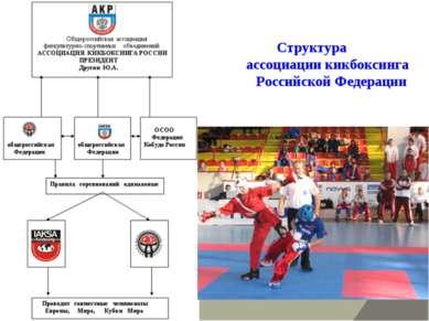 Структура ассоциации кикбоксинга Российской Федерации