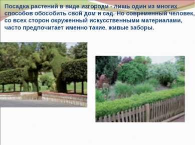 Посадка растений в виде изгороди- лишь один из многих способов обособить сво...