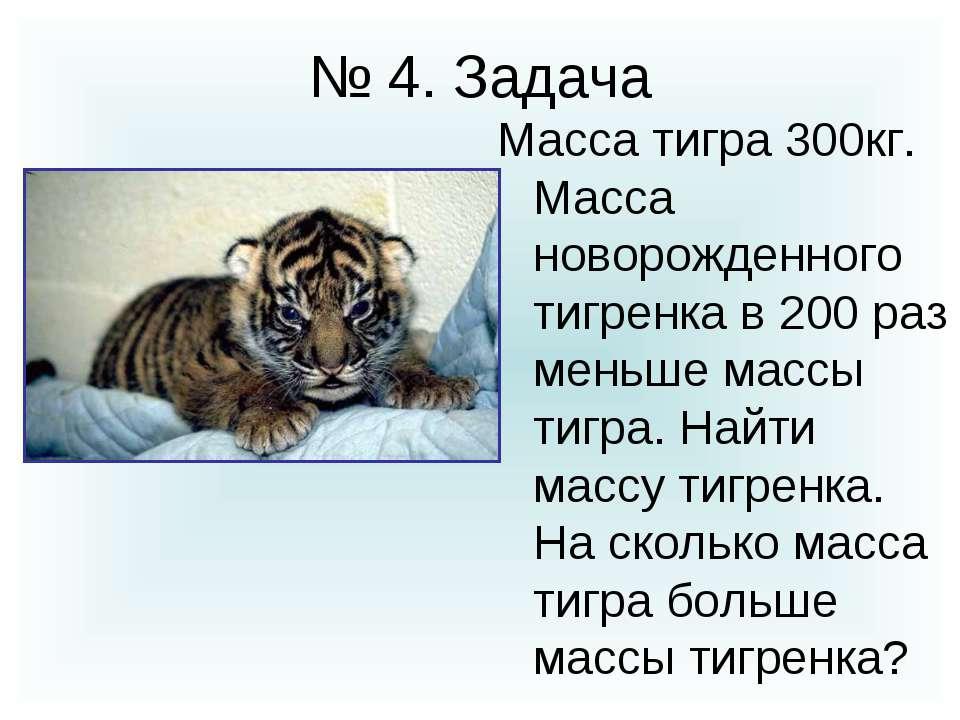 № 4. Задача Масса тигра 300кг. Масса новорожденного тигренка в 200 раз меньше...
