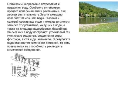 Микроорганизмы, живущие на дне озер и морей, а также в подземных водах, спосо...