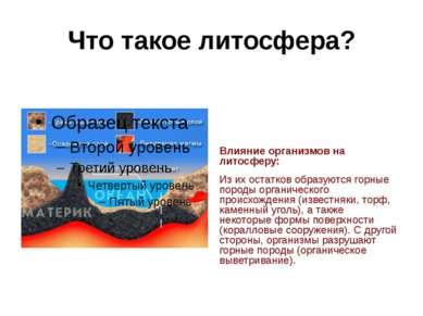 Что такое литосфера? Влияние организмов на литосферу: Из их остатков образуют...
