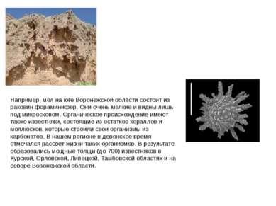 Процесс выветривания горных пород происходит при непосредственном участии орг...