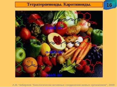"""А.М. Чибиряев """"Биологически активные соединения живых организмов"""", 2009 Тетра..."""