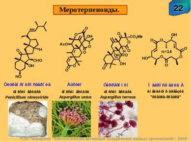 """Меротерпеноиды. 22 А.М. Чибиряев """"Биологически активные соединения живых орга..."""