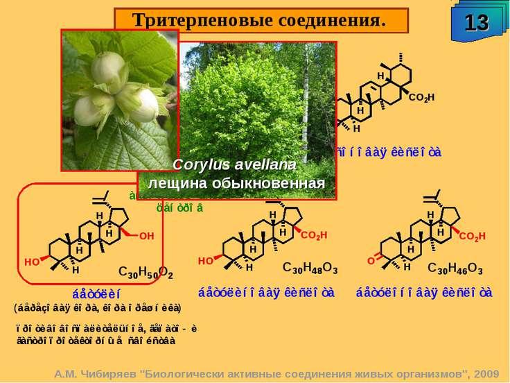 """Тритерпеновые соединения. 13 А.М. Чибиряев """"Биологически активные соединения ..."""