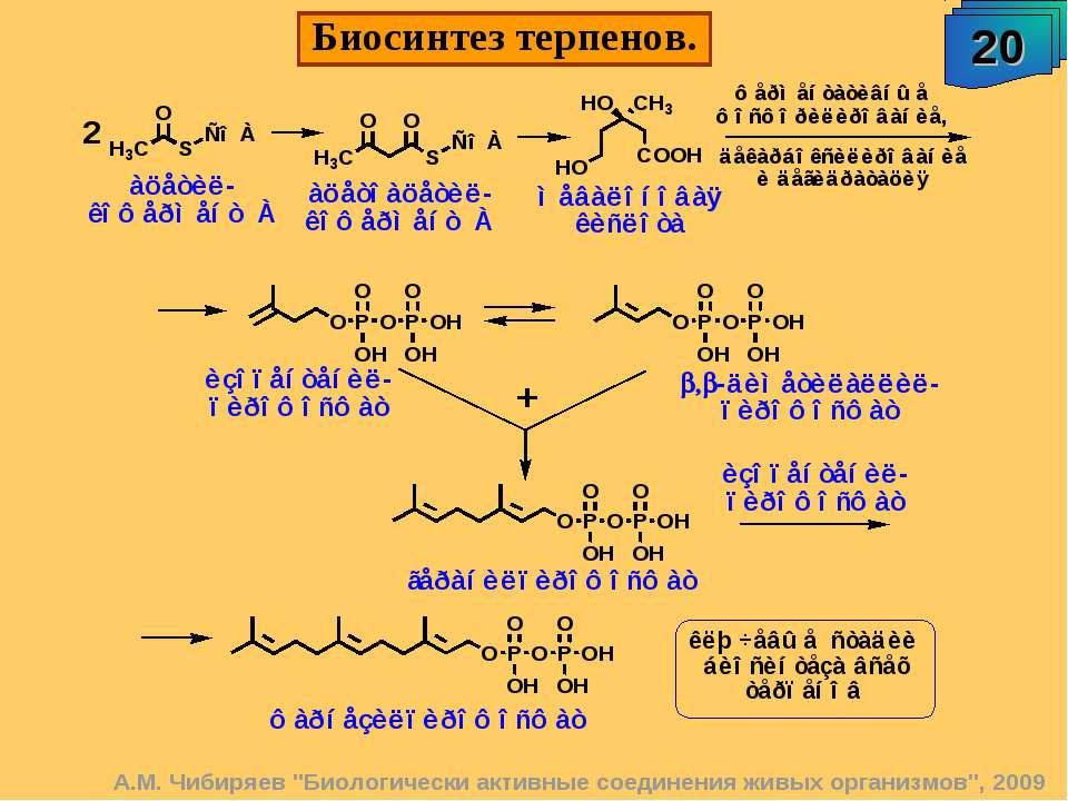 """А.М. Чибиряев """"Биологически активные соединения живых организмов"""", 2009 Биоси..."""
