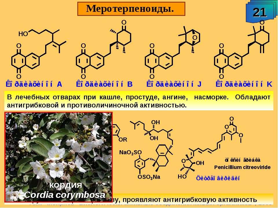 """А.М. Чибиряев """"Биологически активные соединения живых организмов"""", 2009 Мерот..."""