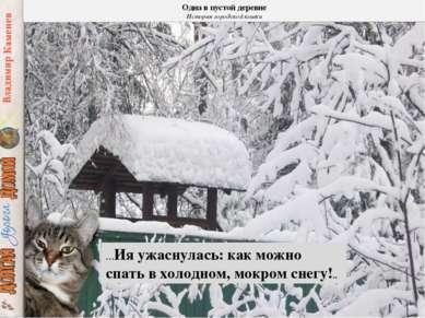 …Ия ужаснулась: как можно спать в холодном, мокром снегу!.. Одна в пустой дер...