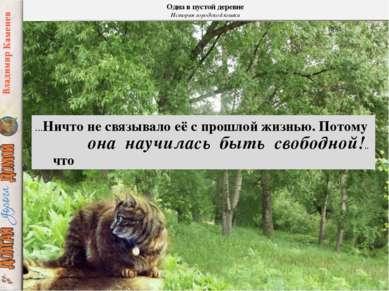 Одна в пустой деревне История городской кошки …Ничто не связывало её с прошло...