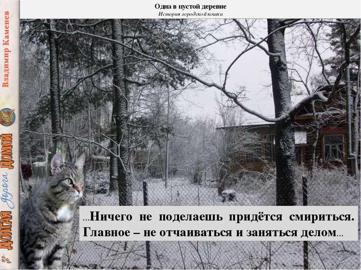 Одна в пустой деревне История городской кошки …Ничего не поделаешь придётся с...