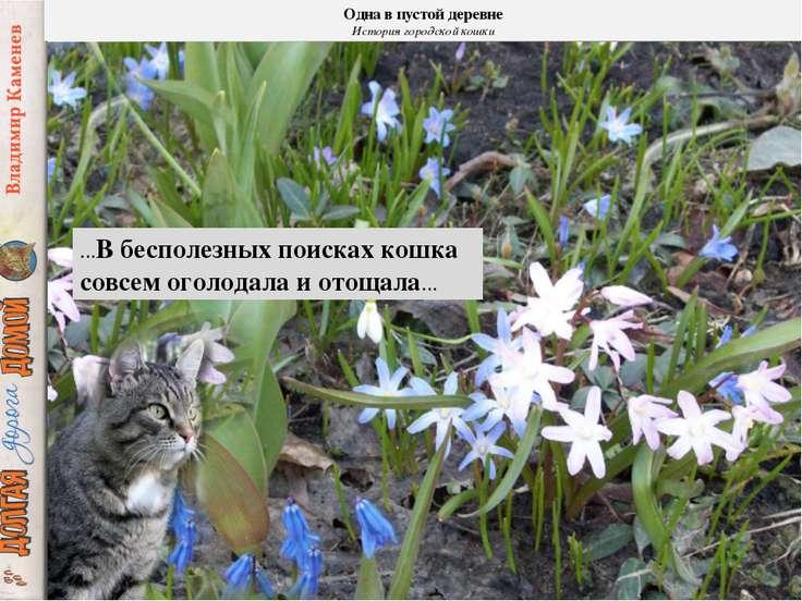 …В бесполезных поисках кошка совсем оголодала и отощала… Одна в пустой деревн...