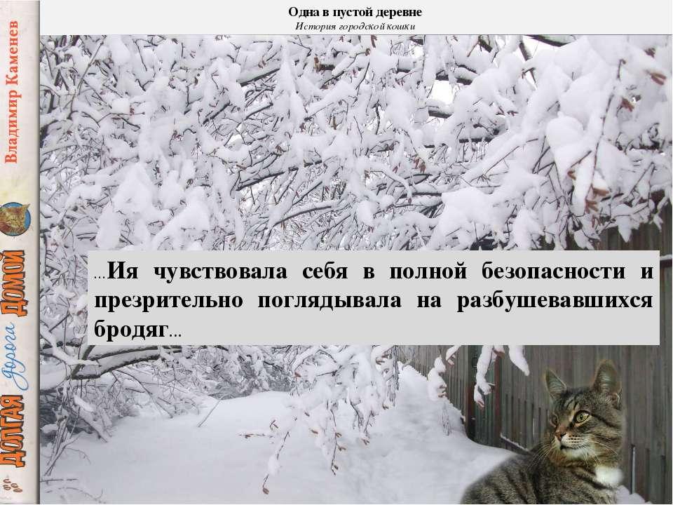Одна в пустой деревне История городской кошки …Ия чувствовала себя в полной б...