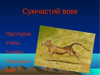 Сумчастий вовк Підготував Учень 5-класу Павлишин Іван