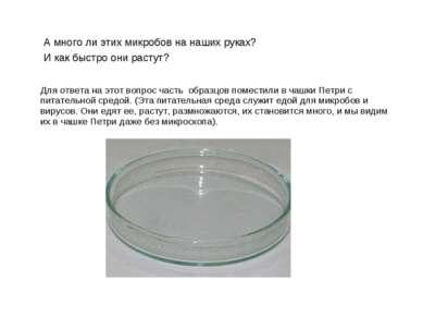 Для ответа на этот вопрос часть образцов поместили в чашки Петри с питательно...