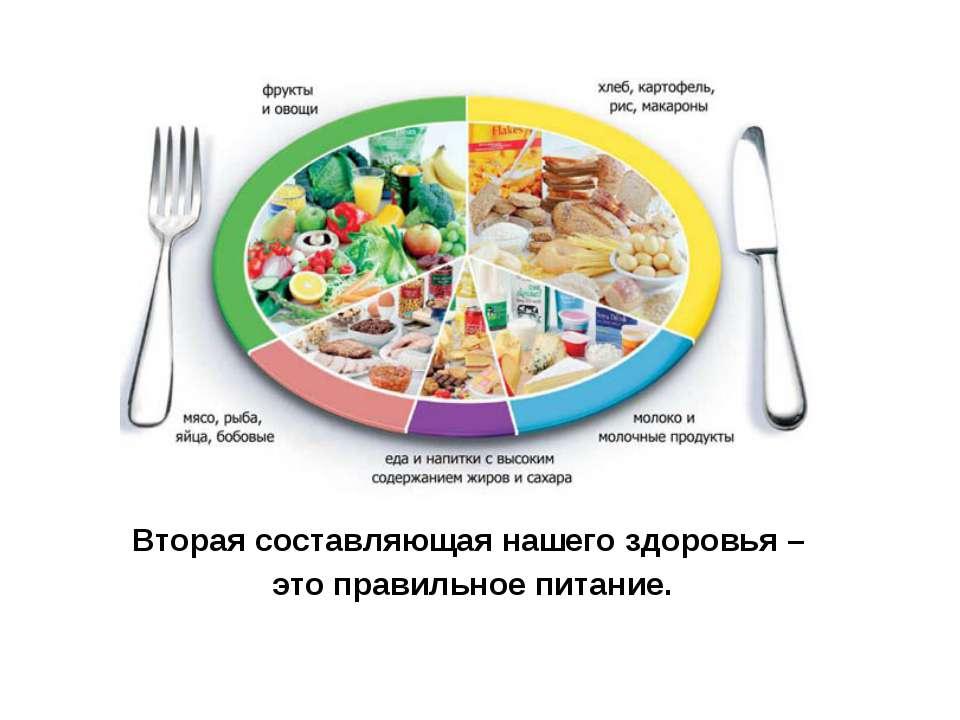 Вторая составляющая нашего здоровья – это правильное питание.