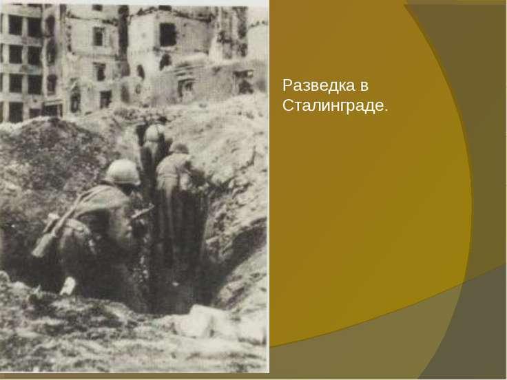Разведка в Сталинграде.