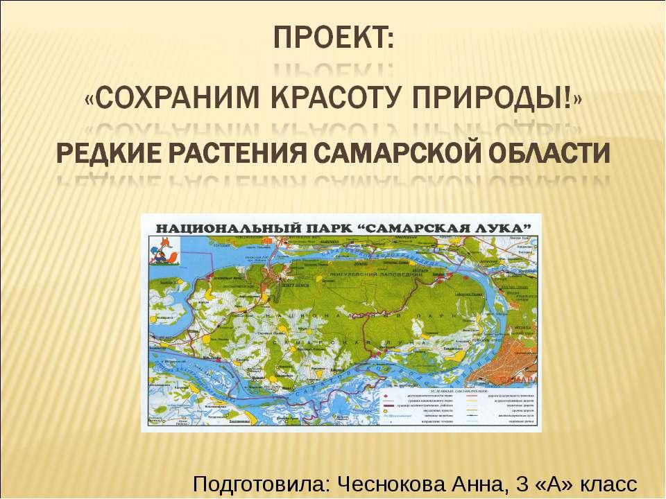 Подготовила: Чеснокова Анна, 3 «А» класс
