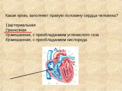 Какая кровь заполняет правую половину сердца человека? 1)артериальная 2)веноз...