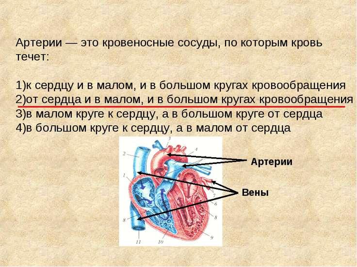 Артерии — это кровеносные сосуды, по которым кровь течет: 1)к сердцу и в мало...